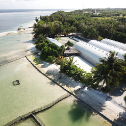 Aerial View of Sea Cucumber Farm