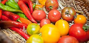 panier-legumes-themes-et-demarches-ville