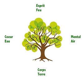 arbre 4 éléments.jpg
