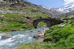 Alpe Pian del Nido