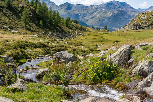 Wanderung Alpe Angeloga