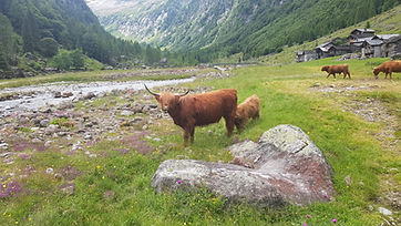Wanderung Val Bodengo