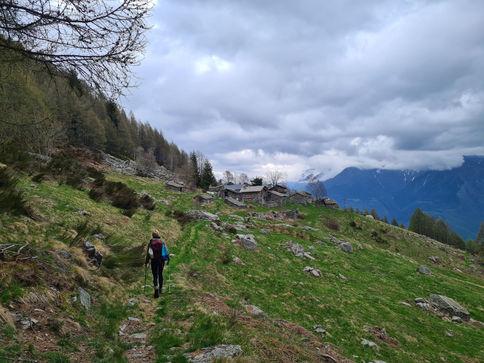 Alpe Forcola