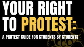 DC Protest Guide