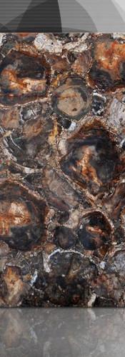 petrified wood brown dark.jpg