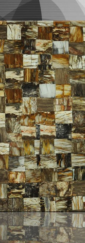 petrified wood brown jurassic 1.jpg