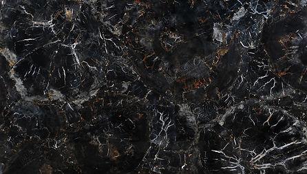 petrified-wood-black-classic-detail.jpg