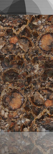 petrified wood brown with gold1.jpg
