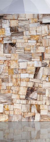 petrified wood brown jurassic random.jpg