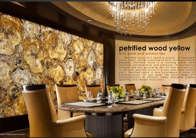 Petrified Wood Yellow decorativ wall.jpg