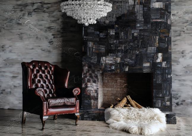 petrified wood black jurassic fireplace.