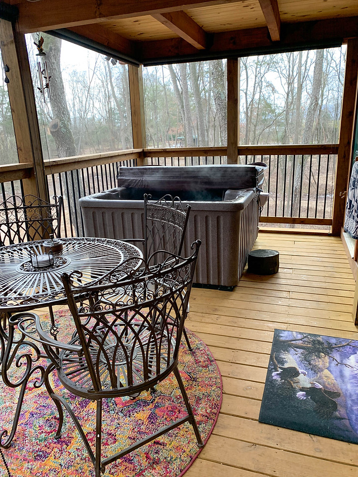 Screened Porch Hot Tub