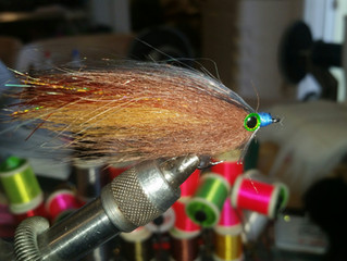 Fly of the Month (May)