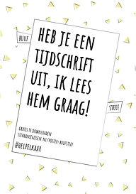 Posters Buuf Steef-09.jpg