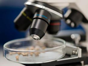Atlas de Parasitologia é produzido pelos cursos de Farmácia e Medicina da Suprema