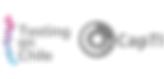 TestingenChile & CapTI Logo.png