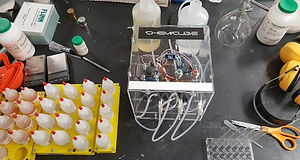 ChemiCube in Action