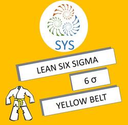LSS - YB