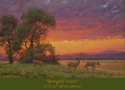 Springhill Sunset