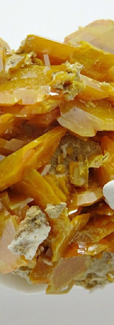 REF15 Wulfenite crystals on matrix  SOLD