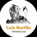 Logo LUIS BURILLO.png