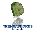 Logo TENCAPEDRES.png