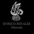 Logo ENRICO RINALDI.png