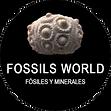 FOSILL WORLD.png