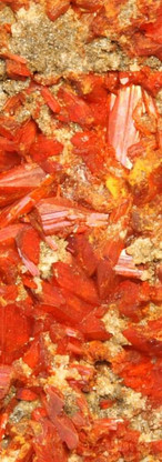 REF01  Crocoite (Type Locality) -  RESERVED