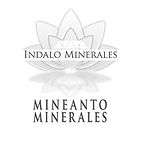 Logo MINEANTO.png