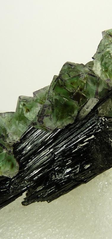 REF-19  Fluorite, goshenite, schorl.  SOLD