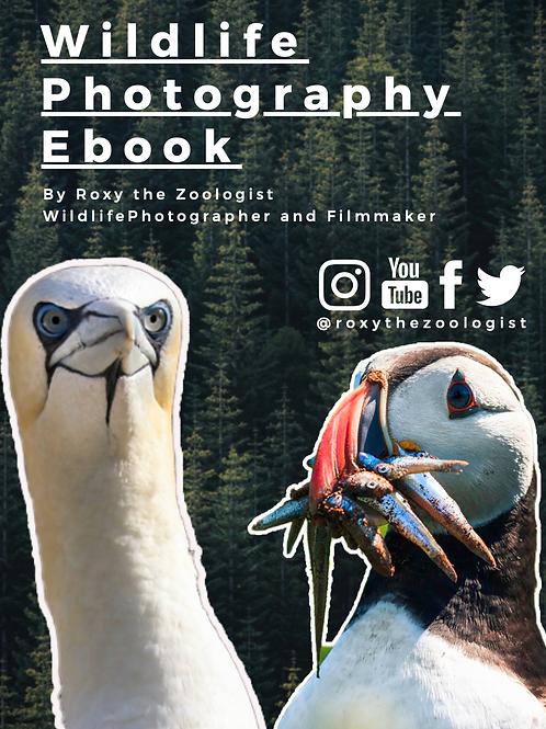 FREE Wildlife Photography EBook