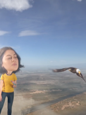 Airheads_Eagle