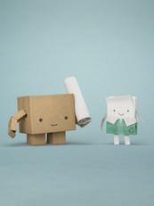 Paper & Pkg Board - Digital Campaign