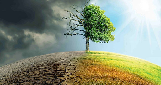 climate-change-tree-865x460.jpg