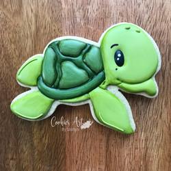 Turtle-y7