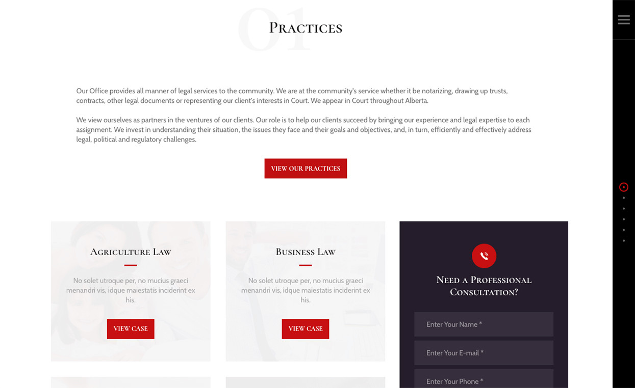 Practice / Services