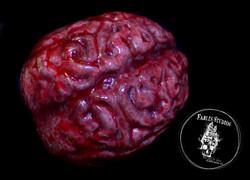 Halloween Props (Bloody Brain)