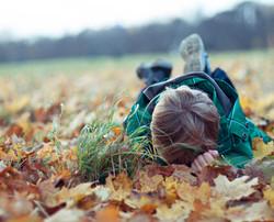 Fall Shooting