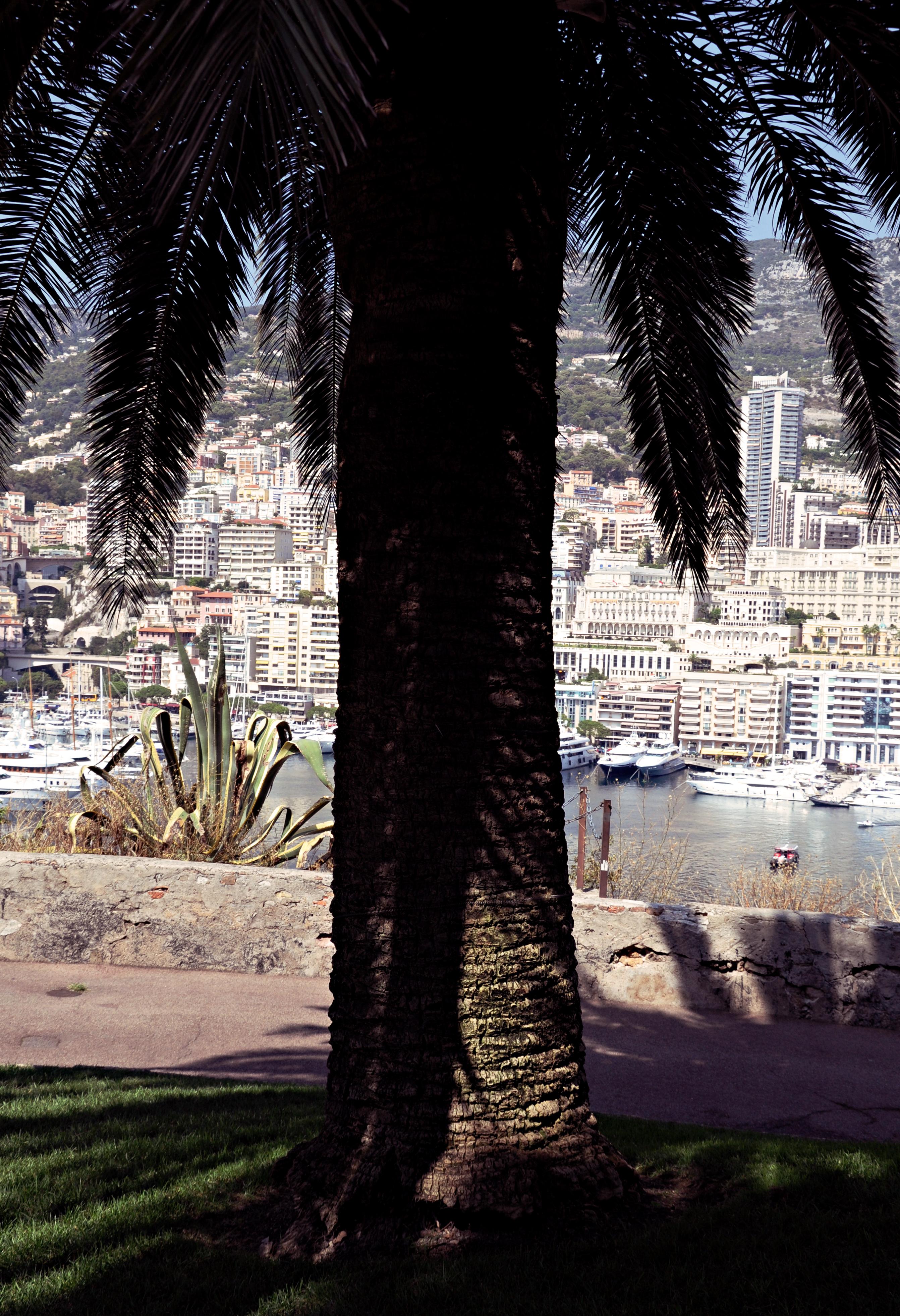 Monaco 2016_0125