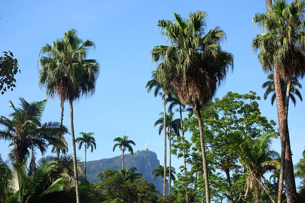 Musts in Rio de Janeiro