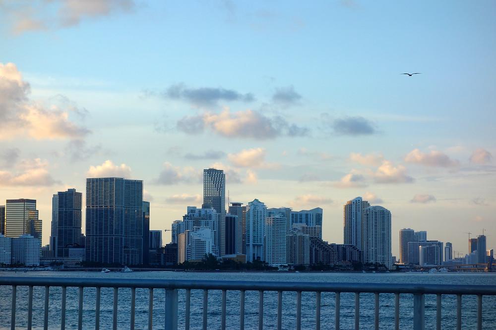 Miami Beach Skyline, Miami Beach Wolkenkratzer, Miami Beach Palmen, Miami Beach Tourismus