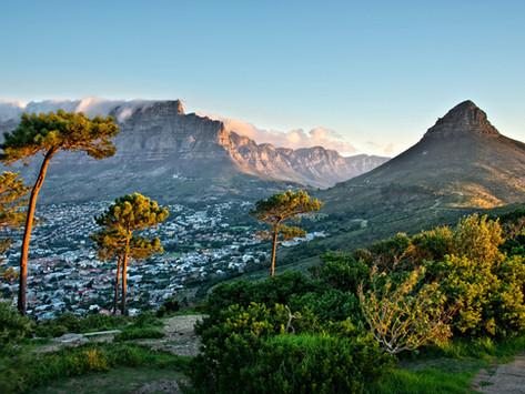 Tagessafari in Kapstadt - was ist ein Game Drive, wie viel Abstand muss ich zu einem Nashorn halten?