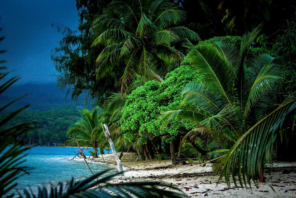 Mikronesien, Fidschi Tipps, Samoa Tipps, Vanuatu Tipps, beste Inseln Südsee