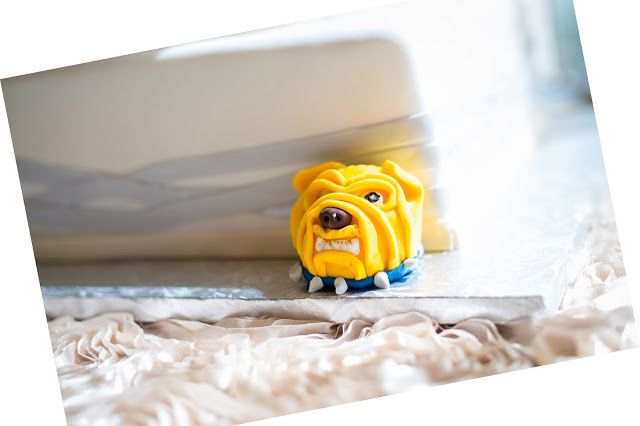 Aggie Bulldog Cake Accent