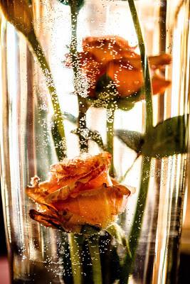 Under Water Florals:  Corum Greenhouses & Florist