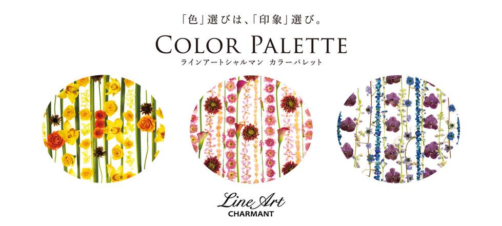 カラー別ヘッダー-01.jpg