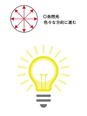 偏光レンズ_アートボード 1.jpg