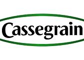 cassegrain.png
