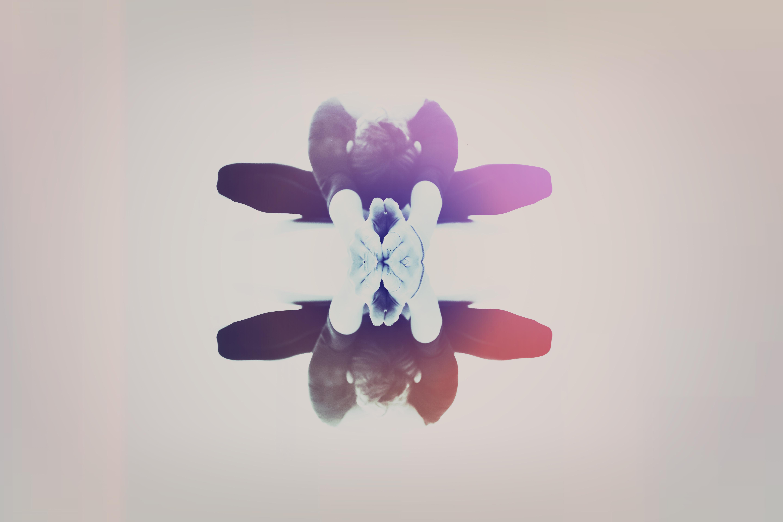 Liron_Flower2